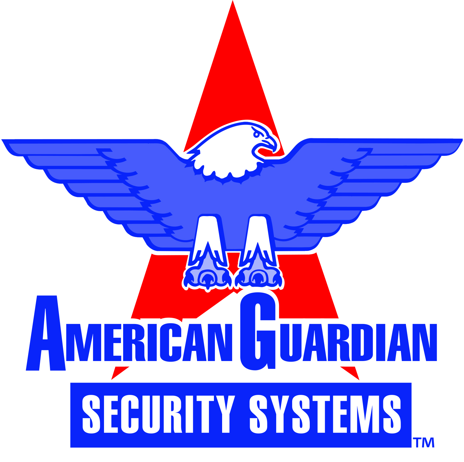 Atlanta Security Systems at American Guardian